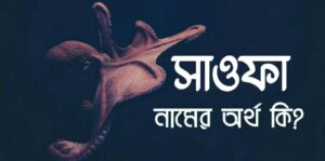 সাওফা নামের অর্থ কি? Sawfa name meaning in Bengali |