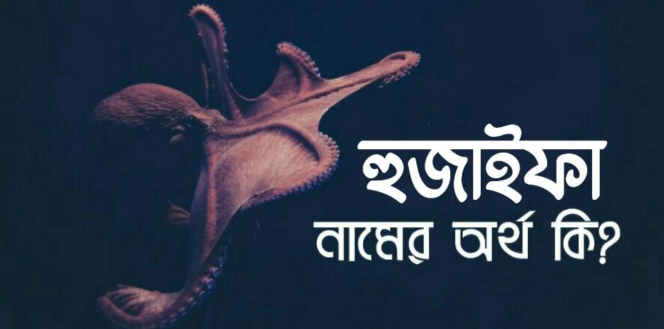 হুজাইফা নামের অর্থ কি? Huzaifa name meaning in Bengali