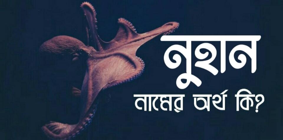 নুহান নামের অর্থ কি? Nuhan name meaning in Bengali
