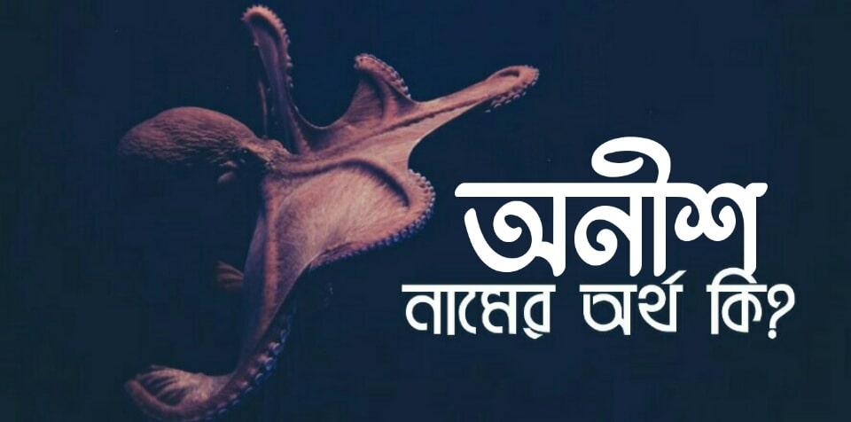 অনীশ নামের অর্থ কি? Aneesh name meaning in Bengali