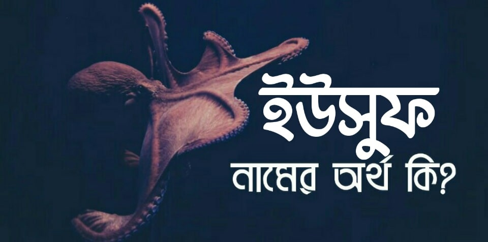 ইউসুফ নামের অর্থ কি? Yusuf name meaning in Bengali