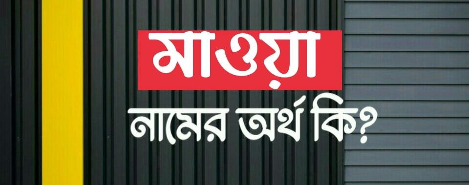 মাওয়া নামের অর্থ কি? Mawa name meaning in Bengali