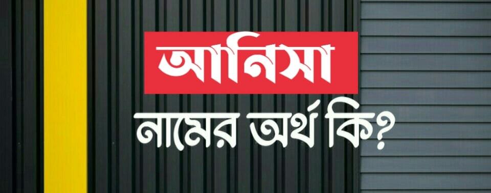 আনিসা নামের অর্থ কি? Anisa Name meaning in Bengali